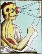 This is an illustration from De homine, a book by the French philosopher and mathematician Rene Descartes (1596-1650). Descartes studied how the mind and the body influence each other in perception and bodily reflexes. Photo Researchers, Inc.