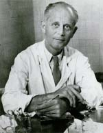 Dr. Hans Selye of the University of Montreal is considered the founder of modern stress research. Bettmann/Corbis