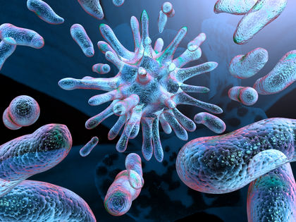 Bacterial Infections - body, causes, How Are Bacteria Different?